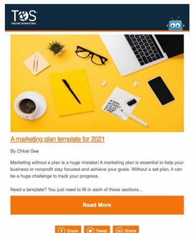 A marketing plan template email newsletter screenshot